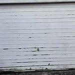 Local Garage Door Repair Company Thornhill
